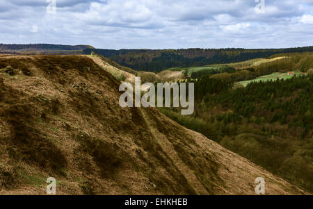 The rolling landscape of the North York Moors National Park showing pine woodland, heather, and dried fern, Yorkshire, - Stock Photo