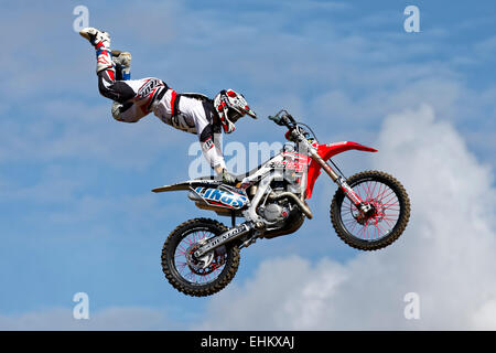 A member of the Bolddog Lings Freestyle Motocross Display Team performs stunts at the 2014 Great Dorset Steam Fair, - Stock Photo