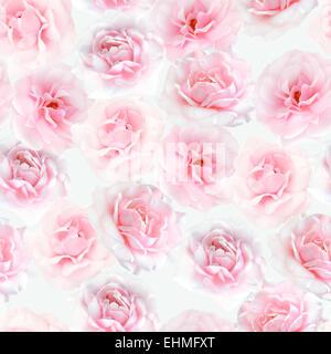 Pink roses seamless pattern - Stock Photo