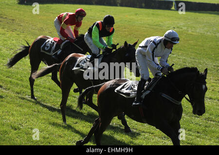 Jockeys and their horses compete during the Velka Pardubicka Steeplechase in Pardubice, Czech Republic. Velka Pardubicka - Stock Photo