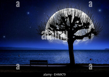 Picture of a lake shore at night with tree and oversized moon - Stock Photo