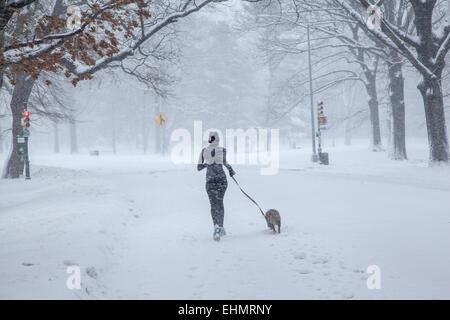 Snowstorm, Prospect Park, Brooklyn, NY. - Stock Photo