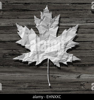 Paper leaf on an old rustic wood background as a symbol of nature and recycling or a pulp and paper industry icon. - Stock Photo