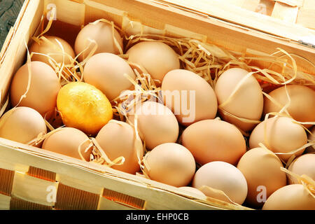 Gold egg in a basket full of eggs - Stock Photo