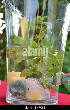 Lemon Balm water - Stock Photo