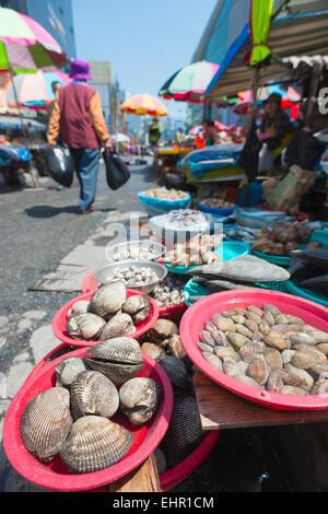 Asia, Republic of Korea, South Korea, Busan, Jagalchi fish market - Stock Photo