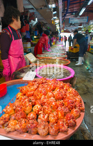 Asia, Republic of Korea, South Korea, Incheon fish market - Stock Photo