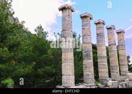 Columns of Athena temple in Priene Turkey - Stock Photo