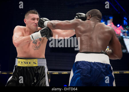 LUBIN, POLAND - MARCH 14, 2015: Professional boxing fight in heavy weight  between Mariusz Wach (black short) and - Stock Photo