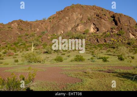 Picacho Peak Campground in Arizona, USA - Stock Photo
