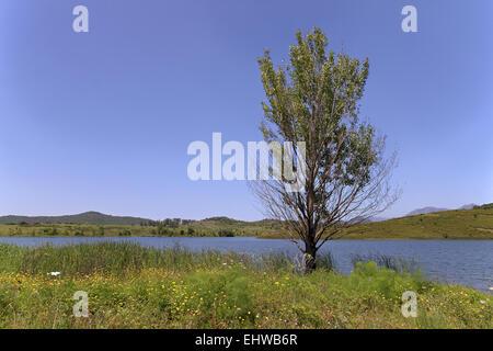 Lac de Padula, Padula lake, Oletta, Corsica - Stock Photo