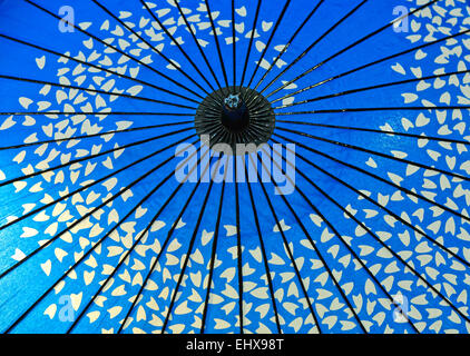 Traditional blue oil paper umbrella, Japanese style with cherry blossom petals, Japan - Stock Photo