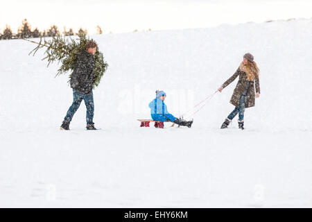Family carries the perfect Christmas tree in snowy landscape - Stock Photo