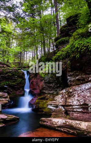 Adam's Falls and tall trees in Rickett's Glen State Park, Pennsylvania. - Stock Photo