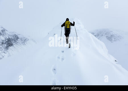 Nallostugan, Kebnekaise mountain area, Kiruna, Sweden, Europe, EU - Stock Photo