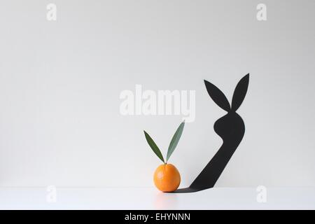 An orange with two leaves attached casting a shadow of a rabbit - Stock Photo