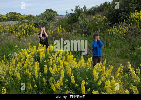 Children playing hide and seek - Stock Photo