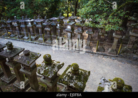 world heritage, City, Japan, Asia, Kansai, Kasuga, Nara, architecture, colourful, history, lanterns, no people, - Stock Photo