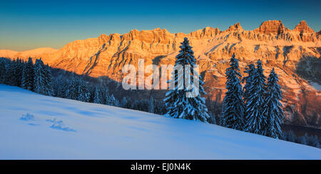 Alps, view, tree, mountain, mountain panorama, mountains, massif, trees, Churfirsten, rock, cliff, spruce, spruces, - Stock Photo