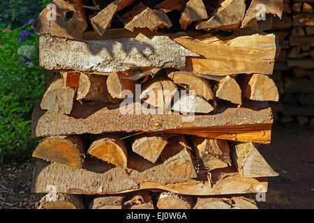 Europe, Germany, Europe, Rhineland-Palatinate, Erlenbach bei Dahn, castle, Berwartstein, wooden pile, detail, mood, - Stock Photo
