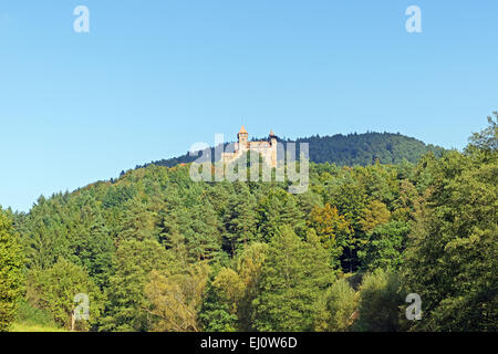 Europe, Germany, Europe, Rhineland-Palatinate, Erlenbach bei Dahn, castle, Berwartstein, architecture, trees, mountains, - Stock Photo