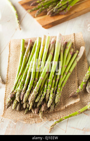 Organic Raw Green Asparagus Ready to Cook - Stock Photo