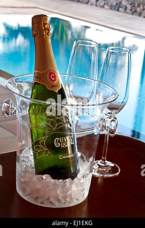 SPANISH SPARKLING CAVA WINE VACATION Codorniu brut Cava Spanish sparkling wine bottle & glasses, on ice in wine - Stock Photo