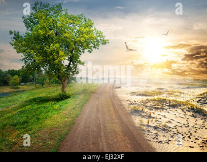 Ecocatastrophe in nature because of global warming - Stock Photo