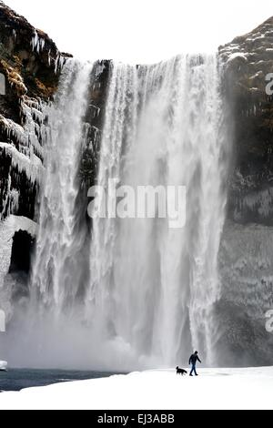 Lone man walks dog in front of Skogafoss waterfall Iceland in snow during winter - Stock Photo