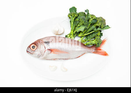 Pezzogna fish, variety of sea bream, on white plate with garlic and broccoli, white background - Stock Photo