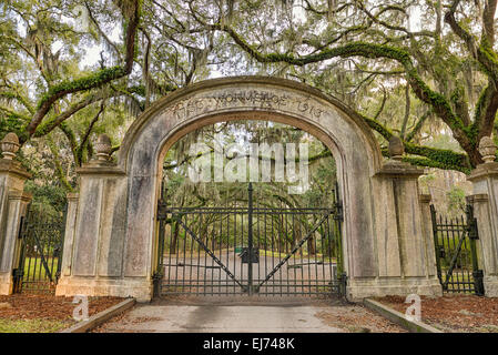 Entry gate to the Wormsloe Plantation Historic Site near Savannah, Georgia. Hdr processed. - Stock Photo