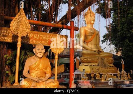 Buddha image and holy man sitting under Bodhi tree - Stock Photo