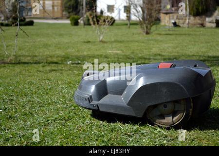 Robot lawn mower cuts grass - Stock Photo