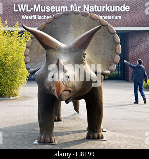 Museum of Natural History, Muenster, Germany - Stock Photo