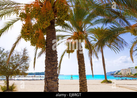 Mallorca Cala Santa Ponsa Ponca beach in Calvia Majorca Balearic islands of Spain - Stock Photo