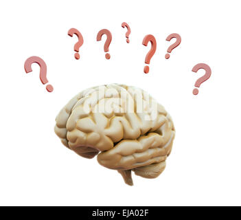 Human brain surrounded with question marks - Stock Photo