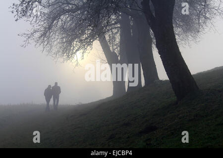 Walk in the Fog - Stock Photo