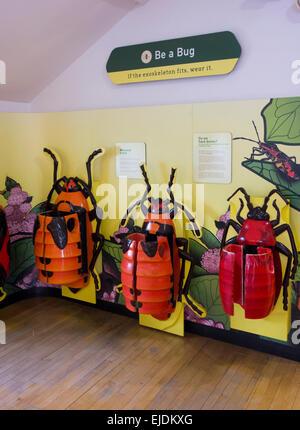 Staten Island Children S Museum Staten Island Ny