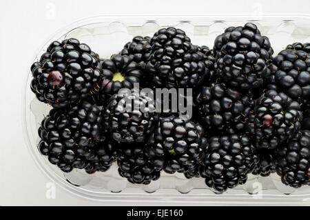 Wild berries  blackberries in a glass bowl close-up - Stock Photo