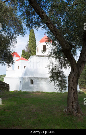 Whitewashed Greek Orthodox church at Nimfes, Nymfes, by olive tree grove in Northern Corfu,  Greece - Stock Photo