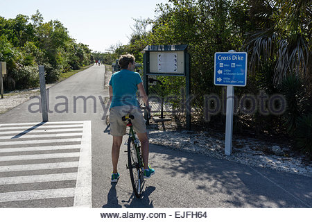 A woman cyclist pauses at a path along Wildlife Drive at Ding Darling wildlife refuge on Sanibel Island, Florida - Stock Photo