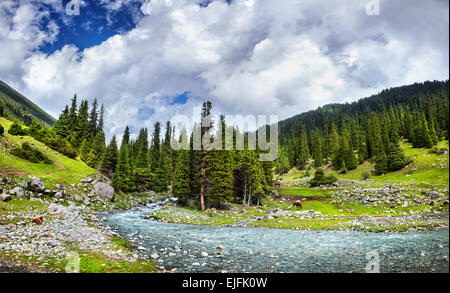 Mountain river near Saint lake in Kyrgyzstan, Central Asia - Stock Photo