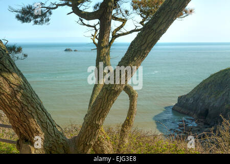 View on a turquoise blue sea and Pudcombe Cove at the bottom of Coleton Fishacre garden, Kingswear, Devon, England, - Stock Photo