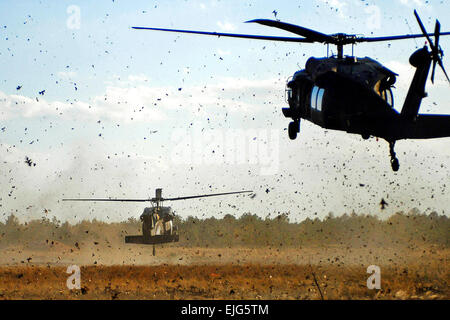 Two UH-60 Black Hawk helicopters land on training ranges to drop off U.S. Army soldiers during an air-assault, live - Stock Photo