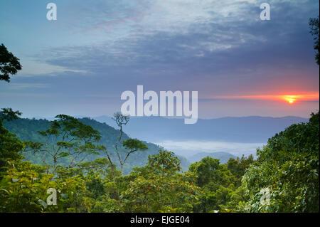 Sunrise seen from Cerro Pirre in the Darien national park, Darien province, Republic of Panama. - Stock Photo