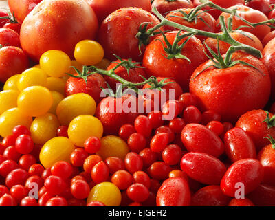 mixed fresh whole tomatoes - Stock Photo