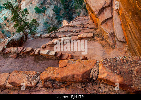 Walter's Wiggles - Zion National Park - Utah - Stock Photo