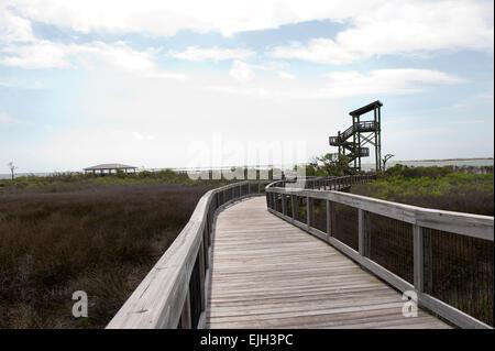 Walking path toward viewing tower at Big Lagoon State Park in Pensacola, Florida - Stock Photo