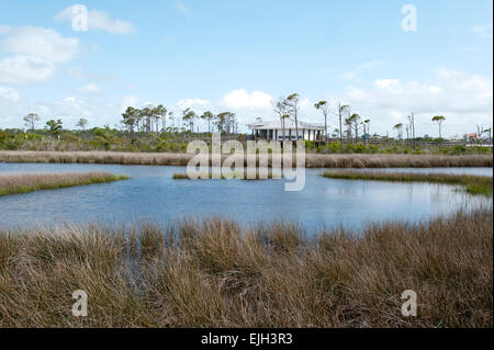 Water view at Big Lagoon State Park Pensacola, Florida - Stock Photo