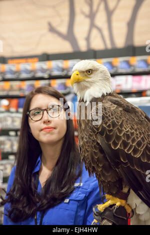 Troy, Michigan - A 25-year-old bald eagle named Challenger with his handler from the American Eagle Foundation. - Stock Photo